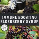 """Two images, one of a jar of elderberry syrup, one of fresh elderberries on a branch. Text overlay says, """"Immune Boosting Elderberry Syrup""""."""