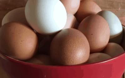 HOW TO HANDLE FARM FRESH EGGS