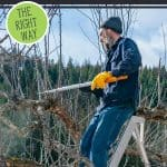 """Man standing on a ladder pruning an apple tree. Text overlay says, """"Pruning Fruit Trees"""""""