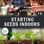 "Two images, one of a man putting potting soil in seed starting pots, the other seedlings growing in little pots. Text overlay says, ""Starting Seeds Indoors""."