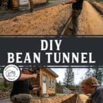 Two photos of two men building a DIY Hoop House or Bean Tunnel.