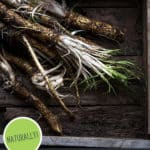 """Picture of astragalus root in a wooden box. Text overlay says, """"7 Easy Steps to Build Your Immune System""""."""