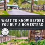"Two images of a homestead with text overlay, ""What to Know Before You Buy a Homestead""."