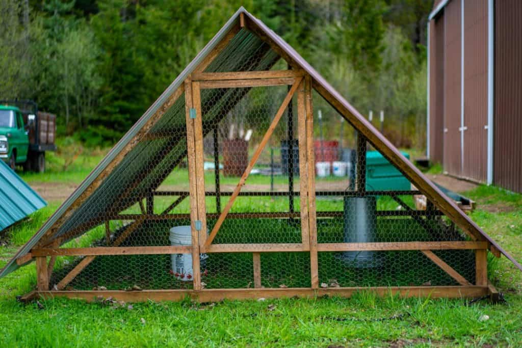 Photo of an a-frame chicken tractor with a feed bucket and watering bucket inside.