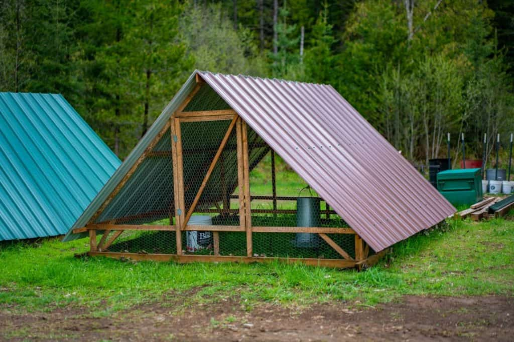 Photo of an a-frame chicken tractor.