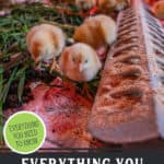 """Baby chicks eating. Text overlay, """"Everything You Need to Know About Raisint Meat Chicks"""""""