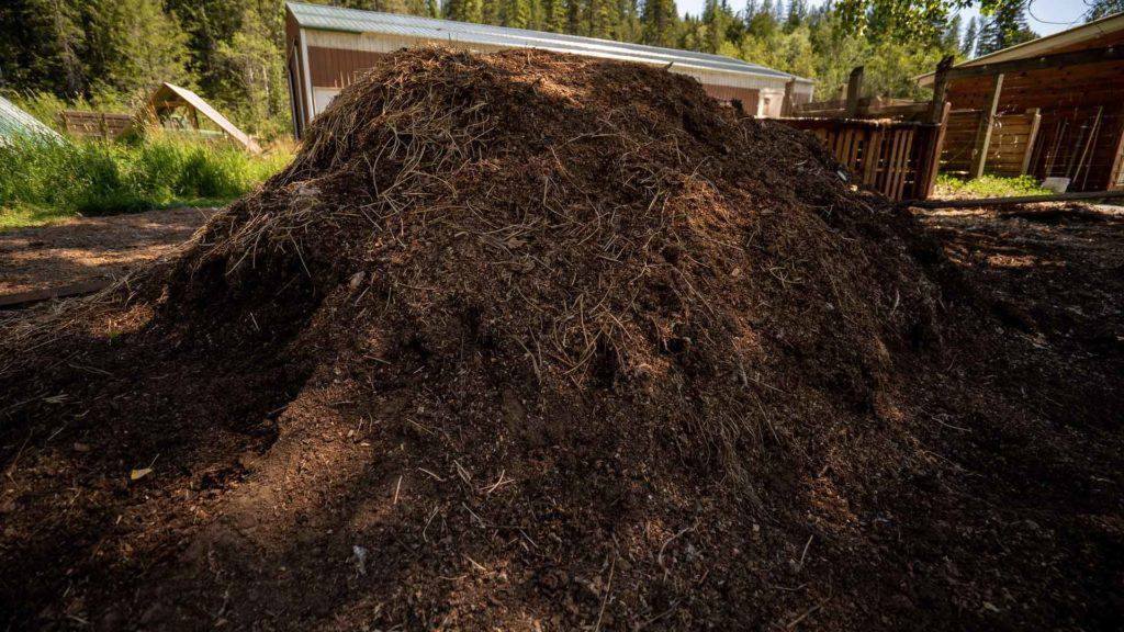 Large pile of compost