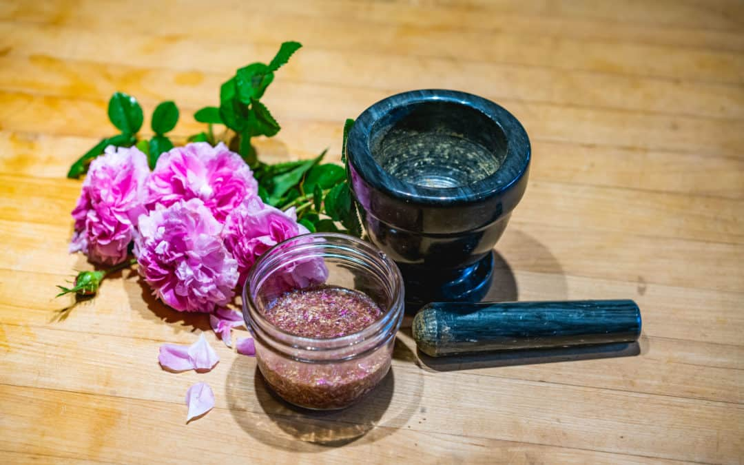 What to do With Rose Petals (Medicinal Uses + DIY Rose Face Wash)