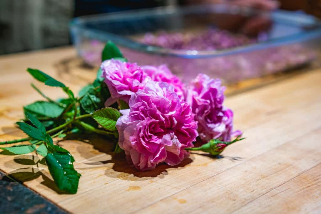 Fresh roses with a tray of dried rose petals in the background.