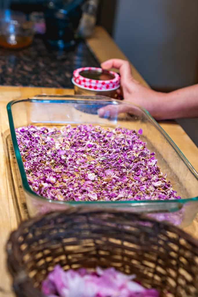 A basket of fresh rose petals and a pan of dried rose petals with a woman's hand holding a jar of ground dried rose petals.