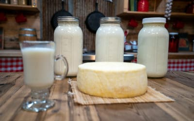What to Do With Raw Milk