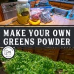 "Pinterest pin with two images. Top image is of a jar of greens powder and smoothie ingredients. Bottom image is a bed of lettuce growing in a greenhouse. Text overlay says, ""Make Your Own Greens Powder""."