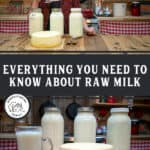 "A Pinterest pin with an image of a woman holding up a glass of milk and three jars of milk plus a large cheese wheel on a counter in front of her. Text overlay says, ""Everything You Need to Know About Raw Milk""."