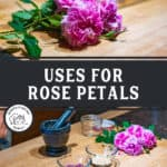 "Pinterest pin with two images. Top image is of a rose and dried rose petals on the counter. The second image is of the ingredients to make diy face wash. Text overlay says, ""Uses for Rose Petals""."
