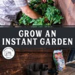 "Pinterest pin with two images of a man planting a vertical garden in a Greenstalk Garden Tower. Text overlay says, ""Grow an Instant Garden""."