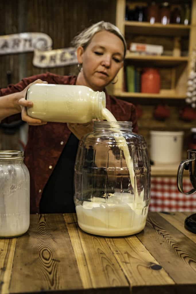 A woman pouring raw cream into an electric butter churn.