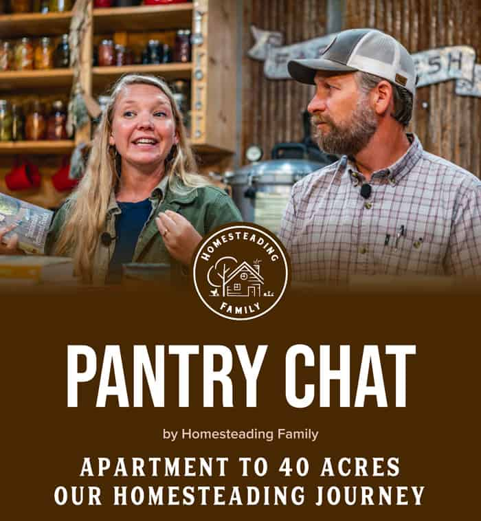 Apartment to 40 Acres – Our Homesteading Journey
