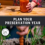 Photo of a jar of tomato soup, and photo of a carrot being pulled out of the ground. Pinterest pin of what to preserve by month.