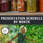 Photo of a girl harvesting food in the garden, and a photo of jars of canned food on a shelf. Pinterest pin of what to preserve by month.