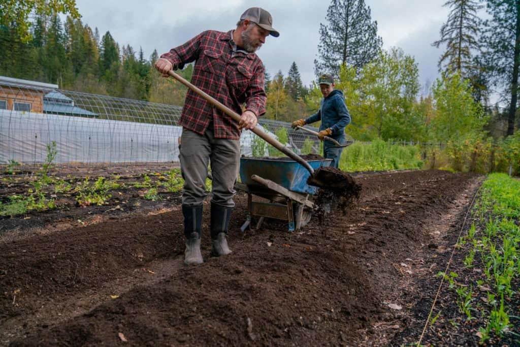 Two men shoveling compost onto a garden bed.