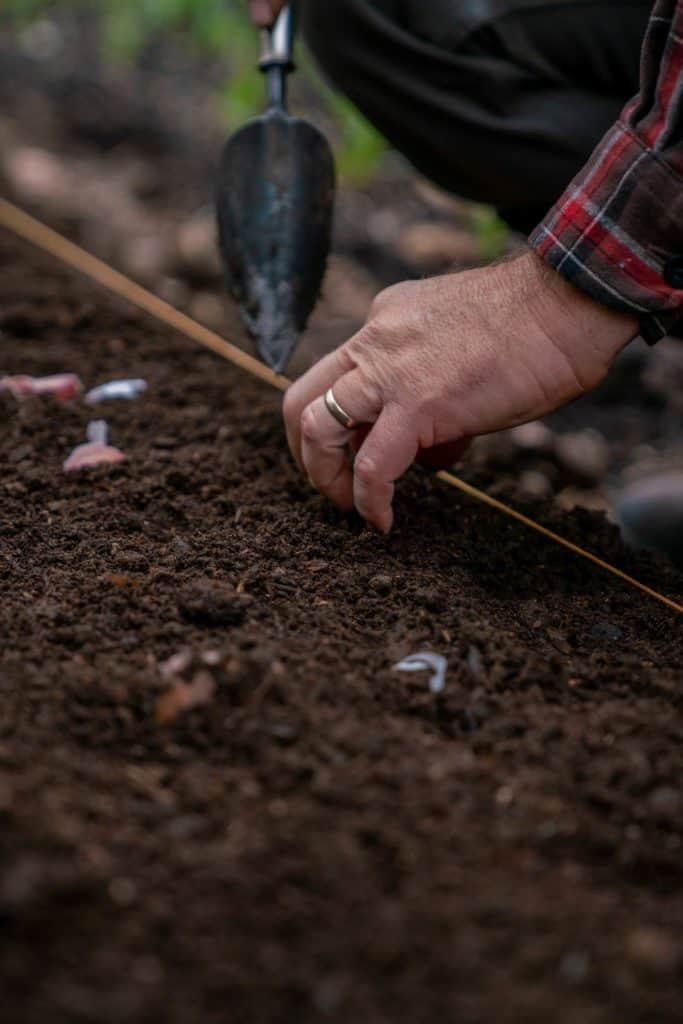 A hand holding a ruler with a garden spade.