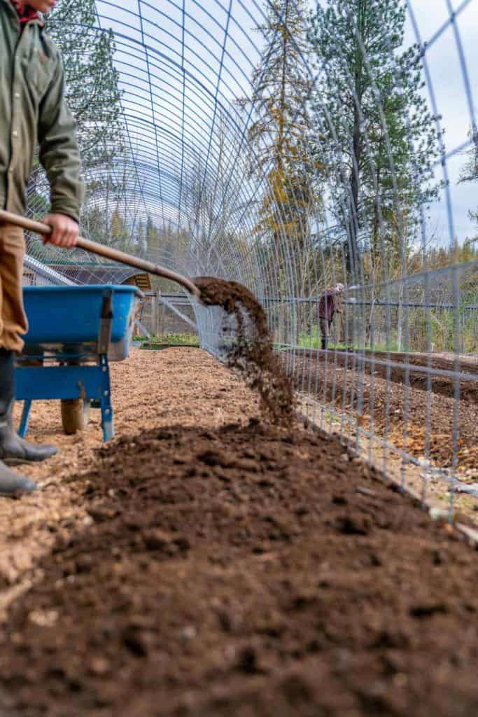 A man shoveling compost onto a garden row.