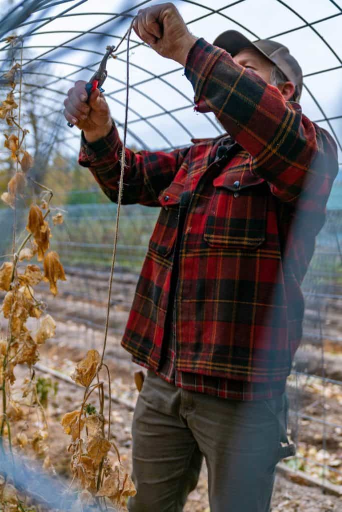 A man cutting twine away from the metal frame of a hoop house.