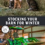 Two photos of a barn and hay for a Pinterest pin on stocking your barn for winter.