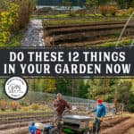 Pinterest pin with two images of the garden.