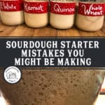 Pinterest pin with images of sourdough starter for a sourdough mistakes blog post.