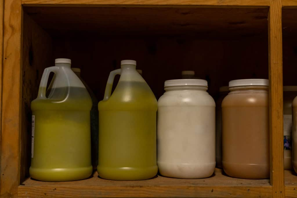 Two gallon jugs of olive oil, a gallon of coconut oil and a gallon of honey on a shelf.