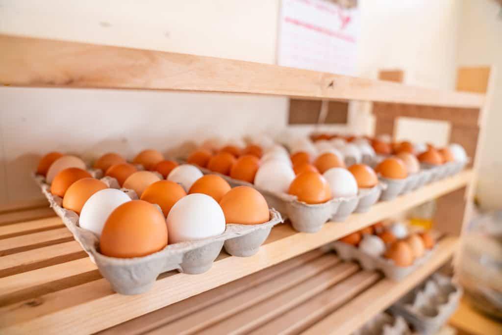 Fresh eggs in cartons on shelves.