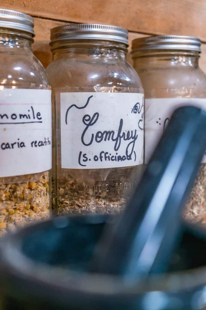 """A glass jar labeled """"Comfrey"""" sitting next to other jars with medicinal herbs. In the forefront is a mortar and pestle."""