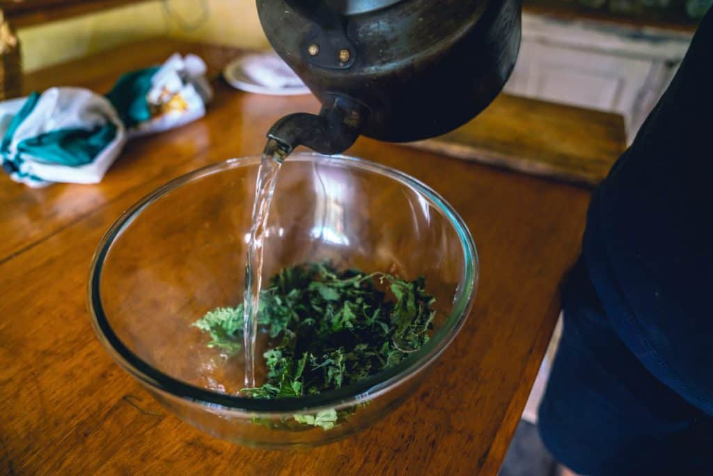 A teapot pouring hot water into a bowl with dried comfrey leaves.
