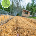 Pinterest pin for early spring garden tips with an image of a garden row mulched and ready for planting.