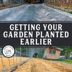Pinterest pin for early spring garden tips with two images of a garden prepped for planting.