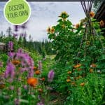Pinterest pin on how to design an old fashioned cottage garden. Photo of a cottage garden in full bloom.