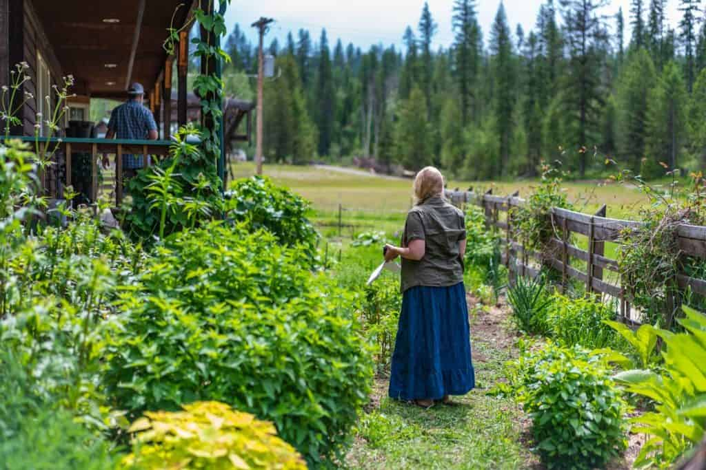 A woman walking through a cottage garden.