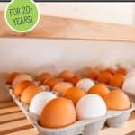 Pinterest pin for freeze dried eggs. Images of fresh eggs in cartons on a wooden shelf.