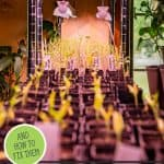 Pinterest pin for seed starting problems and how to fix them. Image of seedlings in seed starting containers under grow lights.