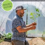 Pinterest pin for seed starting problems and how to fix them. Image of a man transplanting tomato plants into the garden.