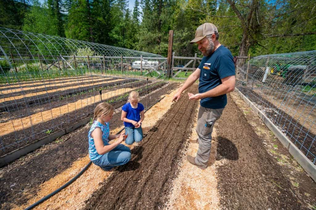 A dad and two daughters planting carrot seeds in the garden.