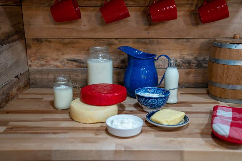 Various dairy products on a counter. Milk, cheese, butter, yogurt, kefir, and clabber.