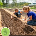 Pinterest pin for how to grow carrots from seed for maximum germination. Photo of two girls planting carrot seeds in the garden.