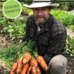 Pinterest pin for how to grow carrots from seed for maximum germination. Photo of a man holding up a giant bunch of carrots.