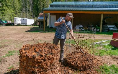 When and How Often to Turn Compost – Composting 201