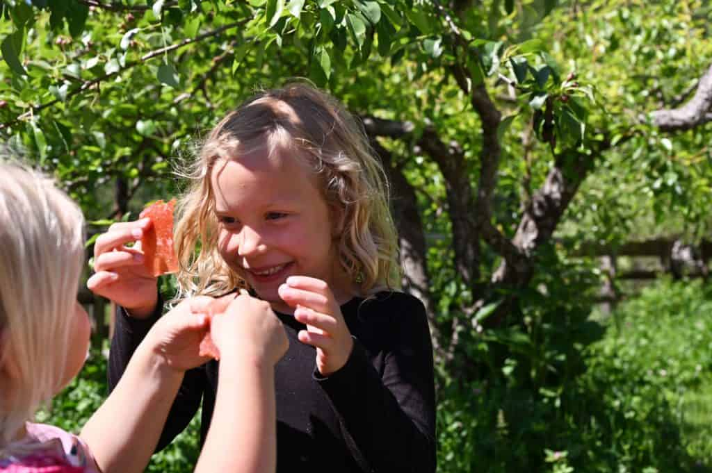 Two little girls eating fruit leather under the trees outside.