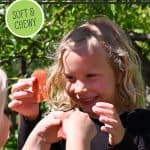 Pinterest pin for homemade fruit leather recipe. Image of a little girl eating fruit leather.