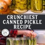 Pinterest pin for how to make pickles. Image of home canned pickles.