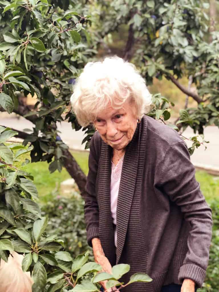 Image of an elderly woman standing in front of a tree.